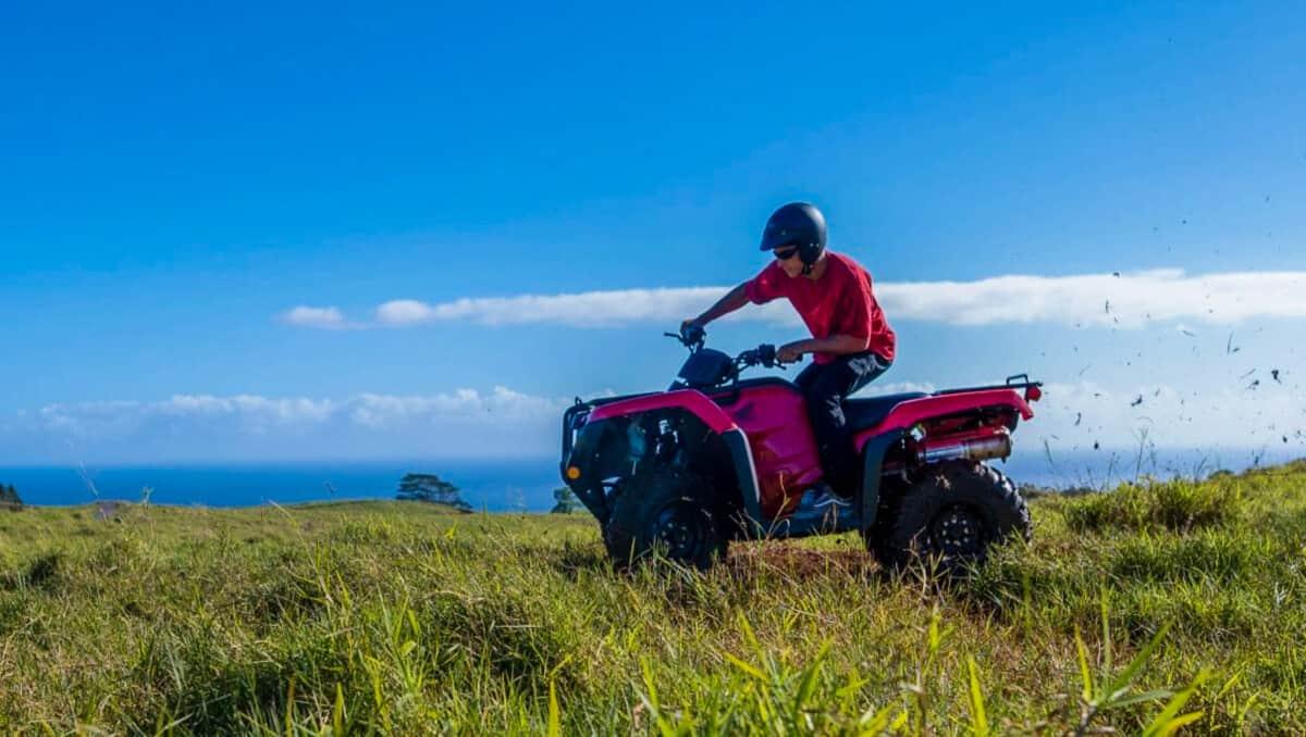 Big Island Hilo ATV UTV Off-Road Tour Umauma Falls