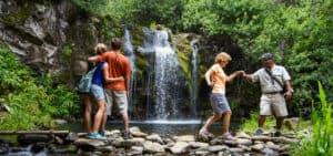 Big Island Waterfall Hiking tour