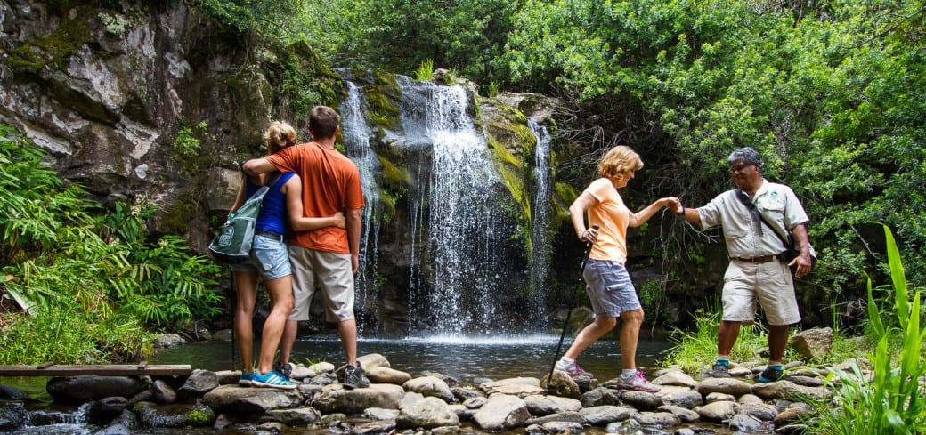 Best Big Island Waterfall Hike is the Kohala Waterfall Adventure Tour