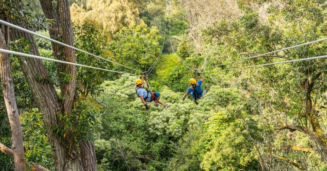 Hawaii Kohala Canopy Zipline Adventure on the Big Island