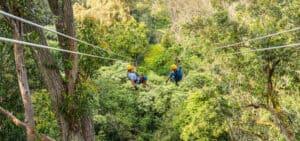Kohala Zipline Hawaii Canopy Adventure Tour
