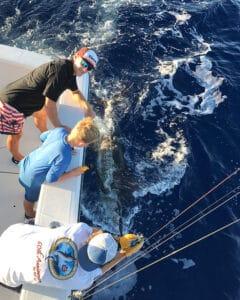 Kona Cowboy sport fishing 6 hour charter