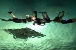 Manta Ray Night snorkeling tour big island hawaii