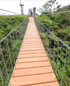 Umauam Falls zipline suspension bridge