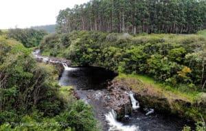 Umauma river with zipline