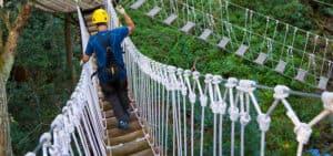 kohala zipline suspension bridge